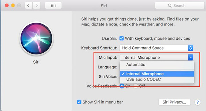 Siri preferences highlighting dock being selected as Mic input as detailed above.
